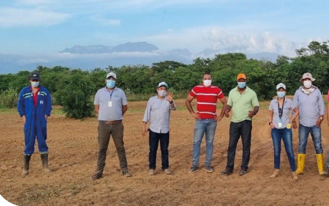 Iniciamos parcelas demostrativas para la alianza con el Centro Biotecnológico del Caribe-Sena